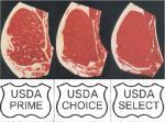 steak-classification